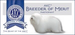 breeder-of-merit-akc-300x140